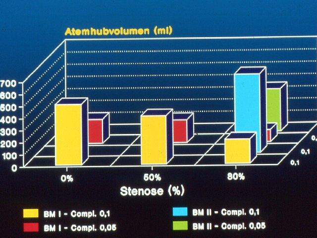 Stenose - experimentelle Ergebnisse